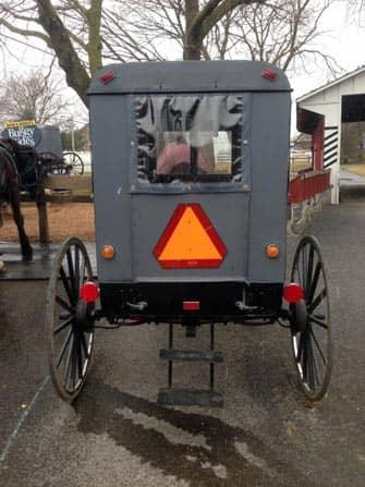 Amischen Buggy Trip from New York
