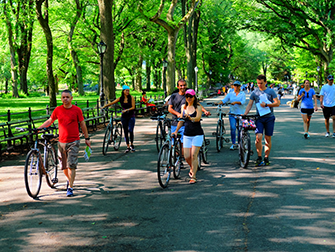 Central Park in New York - Biking