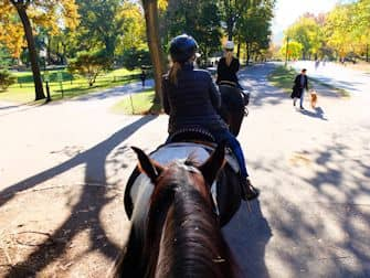 Central Park in New York - Horseback Riding