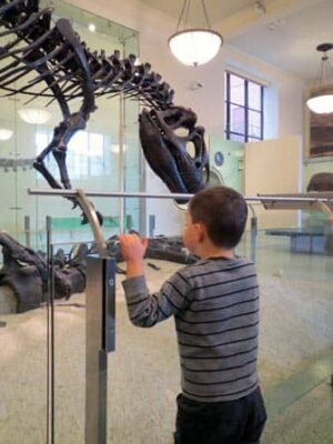 taking the kids to american museum of natural history new york