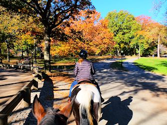 Horseback Riding in Central Park - Bridle Path