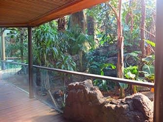 Central Park Zoo Tickets - Rainforest
